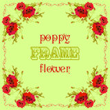 Frame with red poppy flowers and leaves. Floral green background Royalty Free Stock Photos