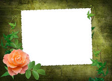 Frame with red rose on the abstract background Royalty Free Stock Images