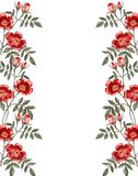 Frame of a red rose flower. Greeting card. Stock Photography