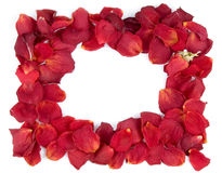 Frame from red rose petals. And one bud Royalty Free Stock Photos