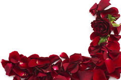 Frame of red rose petals Royalty Free Stock Photography