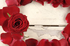 Frame of red rose petals on a wood background. Stock Photography