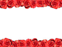 Frame of red roses Stock Image