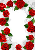 Frame of red roses. Blooming roses and outline on a white background Stock Photography