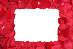 Frame from red roses flowers on Valentine's and mothers day with. Frame from petals of red roses flowers on Valentine's and mothers day with copyspace Stock Photography