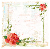 Frame with red roses and ivy. Vintage background with red roses and ivy Royalty Free Stock Photography