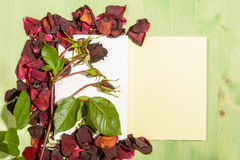Frame of Red Roses Royalty Free Stock Photography