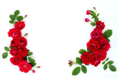 Frame of red roses on a white background with space for text. Royalty Free Stock Image