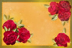 Red rises on a yellow background Royalty Free Stock Photography