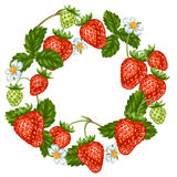Frame with red strawberries. Decorative berries and leaves.  Royalty Free Stock Image