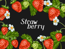 Frame with red strawberries. Decorative berries and leaves.  Royalty Free Stock Photo