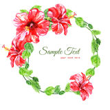 Frame from red watercolor Hibiscus flowers Stock Image