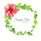 Frame from red watercolor Hibiscus flowers. Illustration isolated on white background. Colorful floral collection with leaves and flowers, hand drawn. Spring Stock Photo