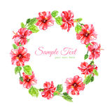 Frame from red watercolor Hibiscus flowers Stock Photos