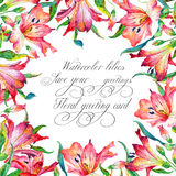 Frame with red watercolor lilies. Royalty Free Stock Photo