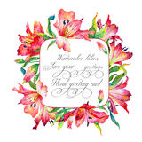 Frame with red watercolor lilies. Royalty Free Stock Image