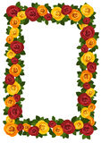 Frame with red and yellow roses. Royalty Free Stock Photos