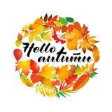 Frame redondo outonal Grinalda das folhas de outono Elementos do projeto Ilustração do vetor Olá! estação nova Fotografia de Stock