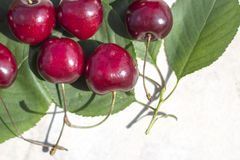 Frame with ripe cherries and green  leaves. The upper left corner , background, banner for print or web use stock photo