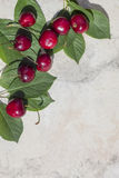 Frame with ripe cherries and green leaves, vertical. The upper left corner , background, banner for print or web use royalty free stock photos