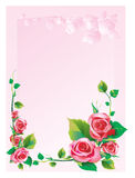 Frame rose. Frame with roses to Valentine's Day Royalty Free Stock Photos
