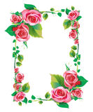 Frame rose. Frame with roses to Valentine's Day Royalty Free Stock Photo