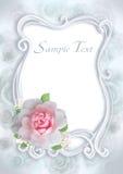 Frame rose Stock Images