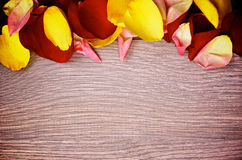Frame of Rose Petals Royalty Free Stock Photos