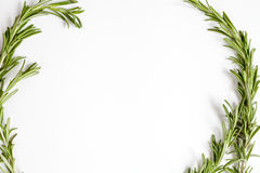 Frame from rosemary on white background top view Stock Image
