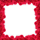 Frame of roses Royalty Free Stock Photo