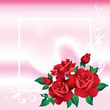 Frame with roses. Stock Photos
