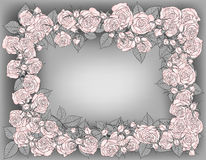 Frame of roses Royalty Free Stock Photography