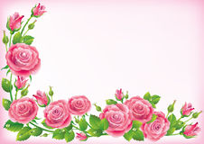 Frame of roses. Illustration contains transparent object. EPS 10 Stock Photos