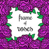 Frame of roses Stock Photo