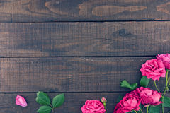 Frame of roses on dark rustic wooden background. Spring flowers. Stock Photo