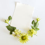 Frame  with  roses, green flowers  leaves and butterflay on white background. Royalty Free Stock Image