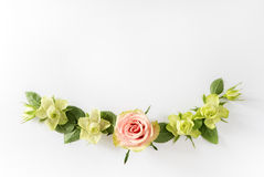 Frame  with  roses, green flowers and leaves on white background. Stock Photography