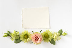Frame  with  roses, green flowers and leaves on white background. Royalty Free Stock Photo