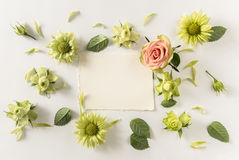 Frame  with  roses, green flowers and leaves on white background. Stock Photos