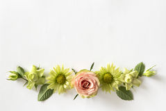 Frame  with  roses, green flowers and leaves on white background. Stock Images