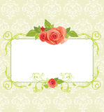 Frame with roses on the ornamental background Stock Images