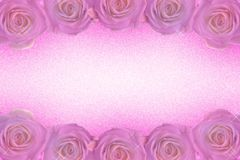 A frame of roses in purple tones stock photos