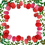Frame of roses. Red background beautiful flowers and location fo Stock Photography