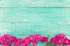 Frame of roses on turquoise rustic wooden background. Spring flo Royalty Free Stock Photography