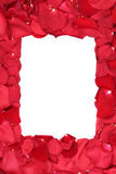 Frame of roses on Valentine's and mothers day with copyspace Stock Photo