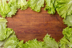 Frame of salad Royalty Free Stock Image