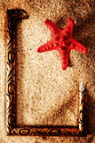 Frame in the sand with starfish Stock Images