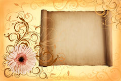 Frame scroll in pastel shades Stock Photos