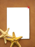 Frame with sea stars Royalty Free Stock Image