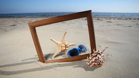 Frame with seashell, starfish and sunglasses on the beach stock video footage